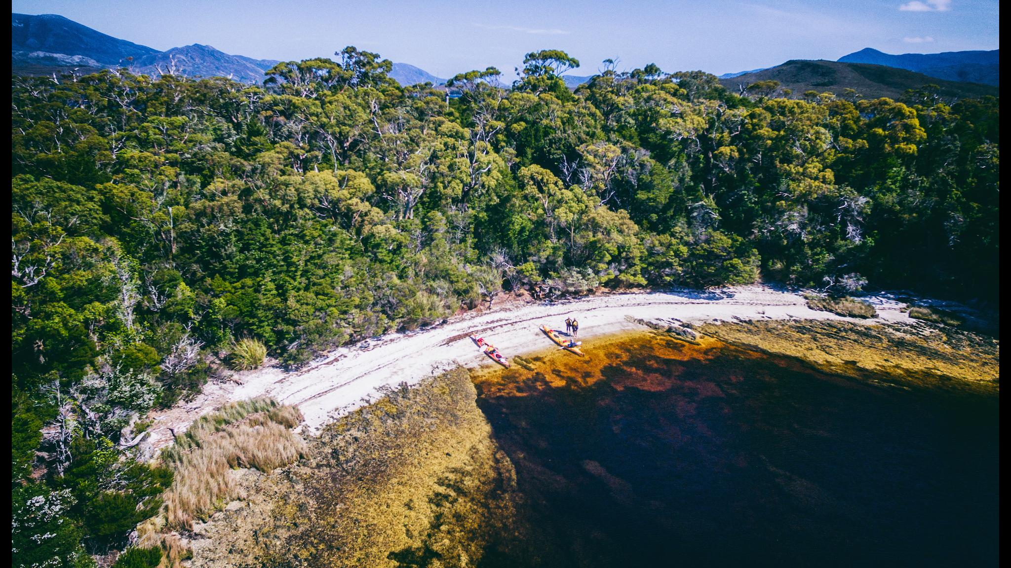 Celery Top Islands on Bathurst Harbour Southwest Tasmania