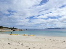 Adventures on Flinders Island Kayaking Trips